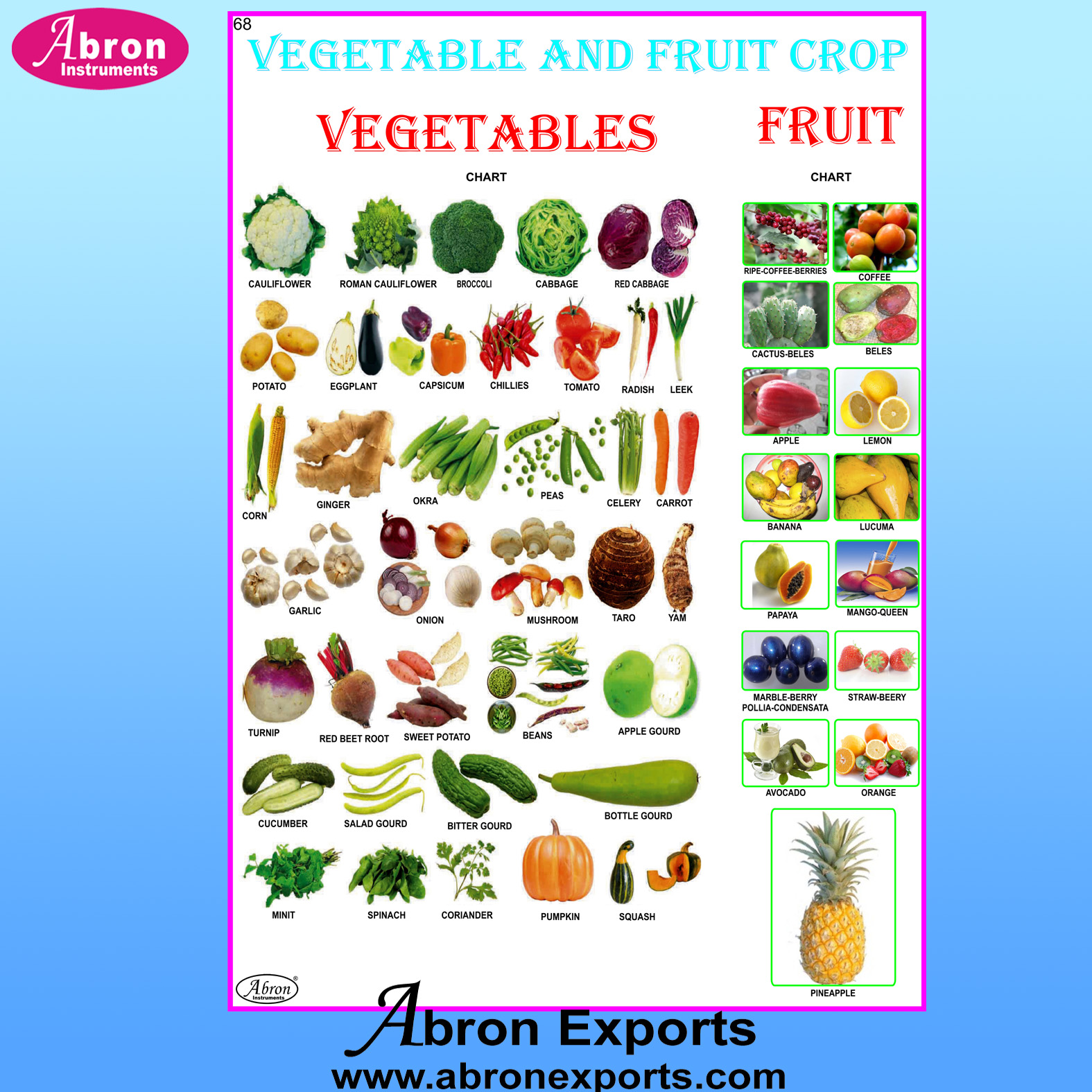 Chart Laminated Ethiopia Vegetable and Fruit Crop