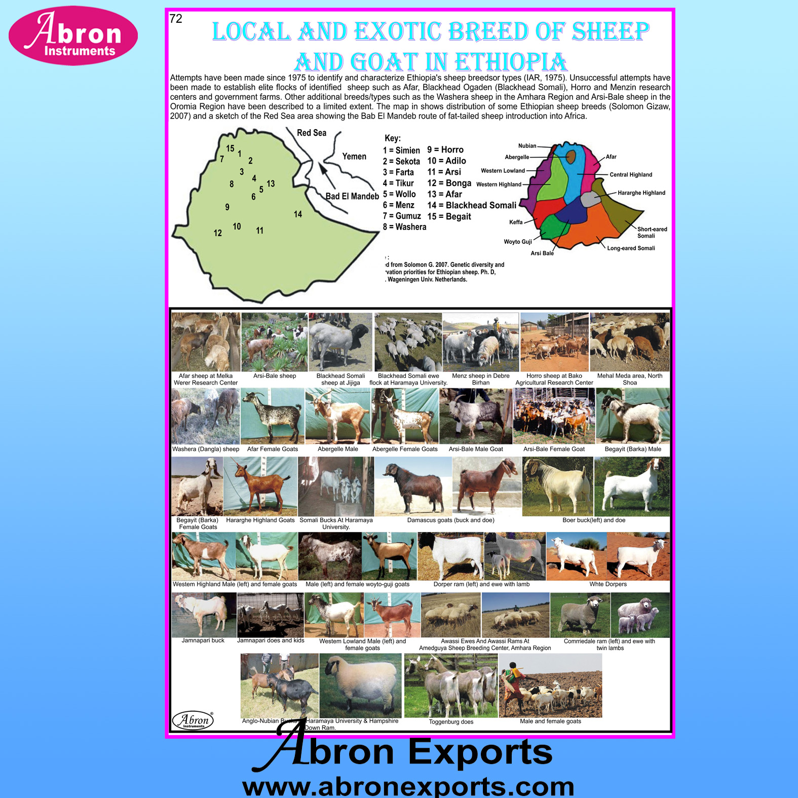 Chart Laminated Ethiopia Sheep & Goats Local And Exotic Breed